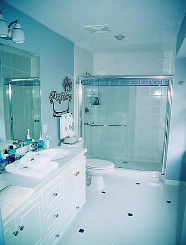 Master Bath Sinks Master Bath Shower