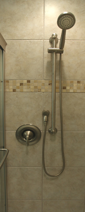 moen shower rod handheld