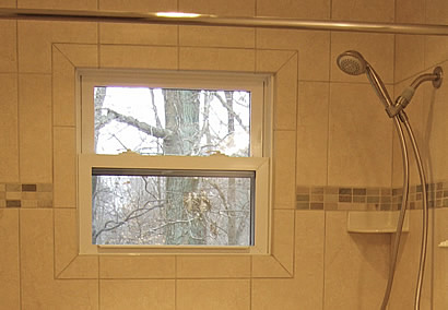 tub shower window