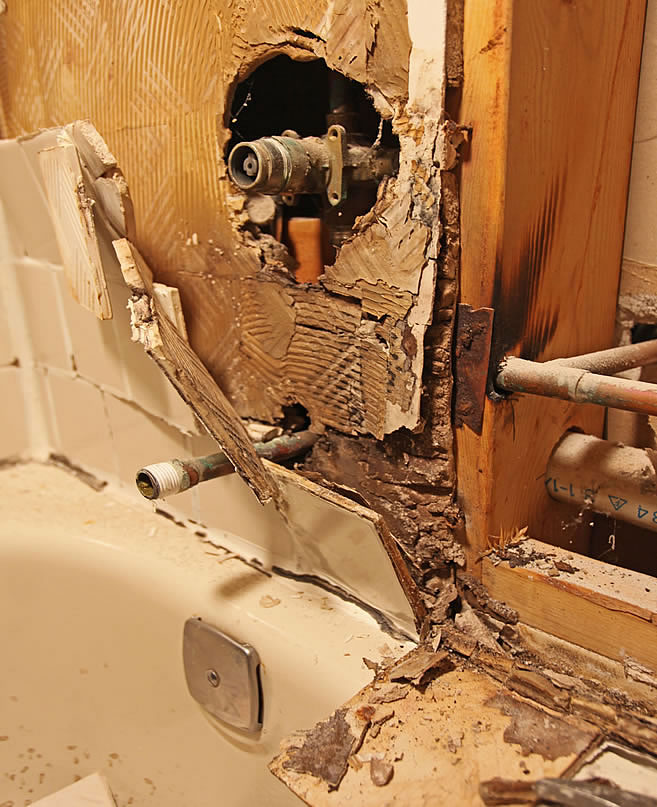 Bathroom Black Mold: DIY Bathroom Remodeling Tips Guide Help Do It Yourself
